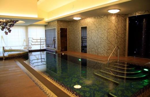 privatus baseinas ir masazine vonia (8)